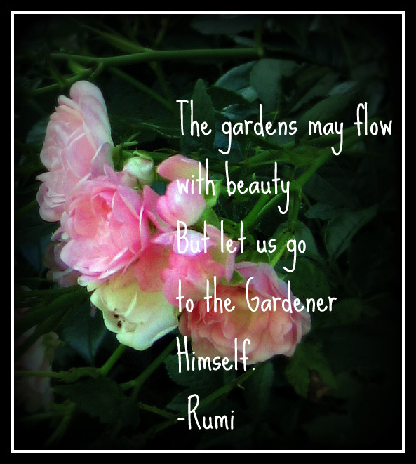 Rumi Quotations Children Of Light