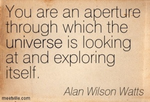 You Are The Universe Alan17