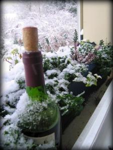 my wine cooler, the window box on the kitchen window.