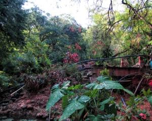 Ashram Gardens