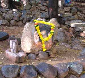 my photo taken this year in the garden of rocks where there are several wonderful painted rocks. Here is one of Sai Baba. the garland, I could not quite place over the rock as I would have liked.