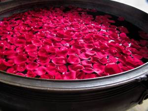 rose petals in Leela Palace Hotel, Bangalore