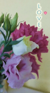 Valentine Images - from my bouquet
